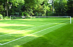 natural grass tennis court surface